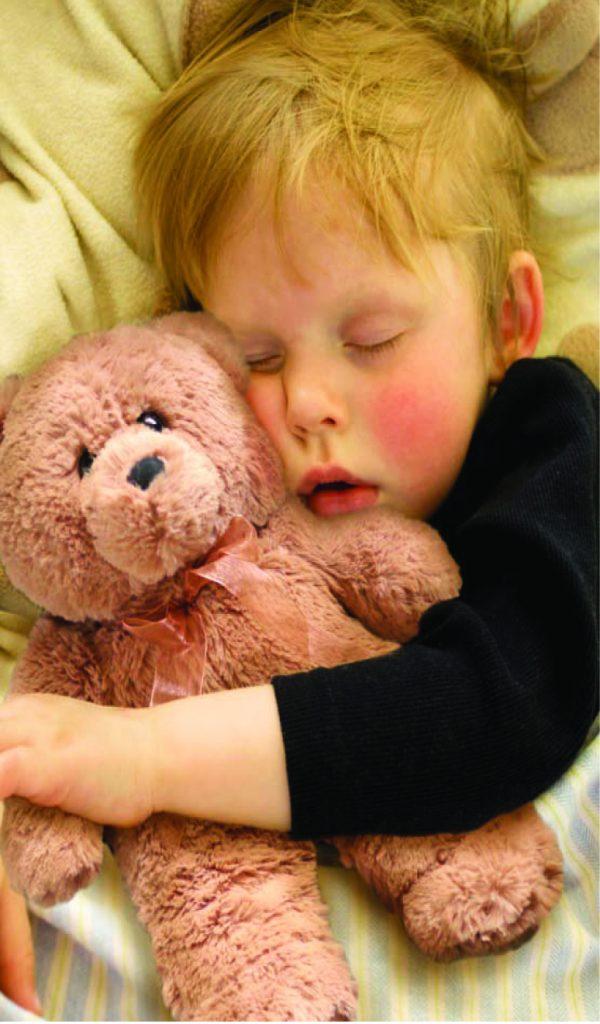 Spa Comforts Cozy Critter Buddy Bear